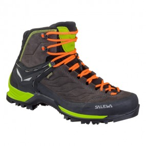 Cipele MOUNTAIN TRAINER MID GORE-TEX® M